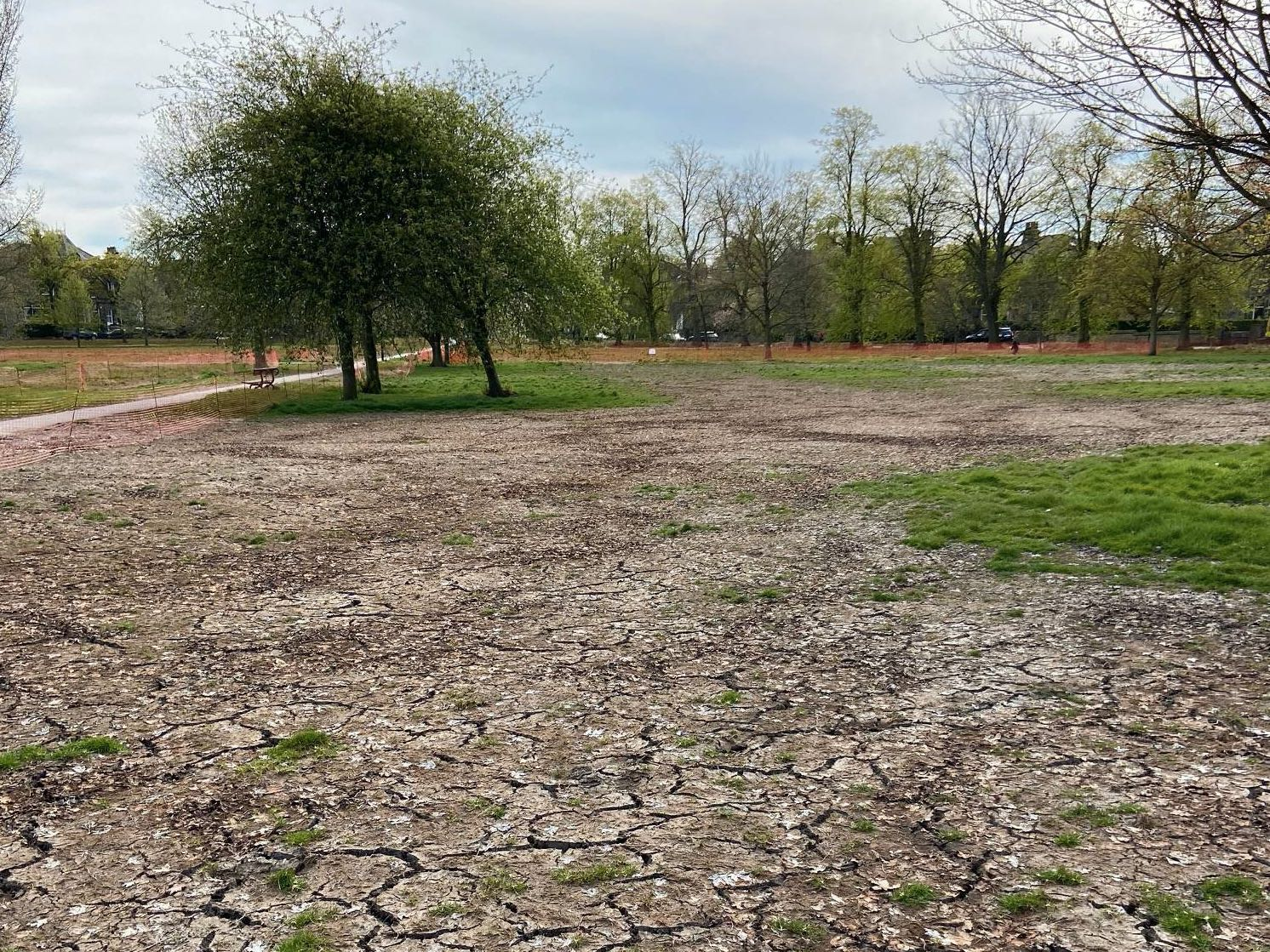EXCLUSIVE: Harrogate council will spend more than £200,000 restoring the Stray