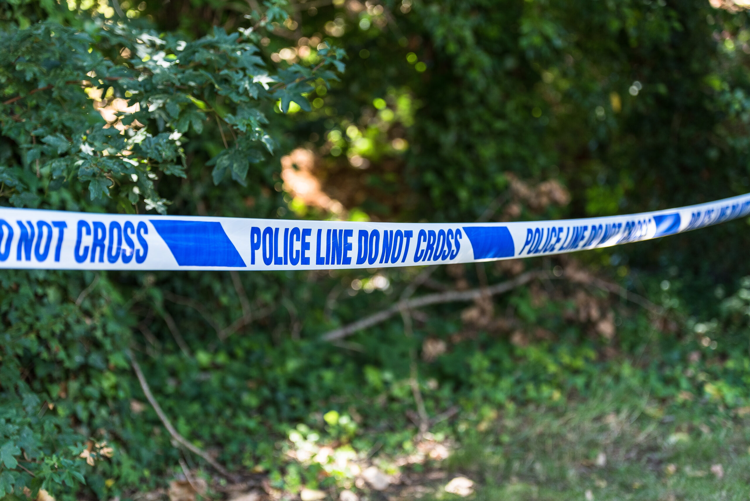 Police appeal for witnesses after fatal accident near Ripon