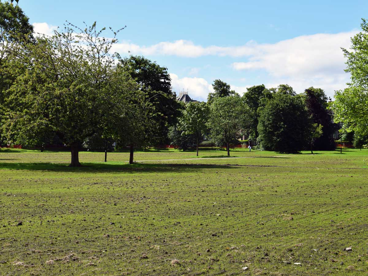 West Park Stray: Green shoots of recovery after months of mud