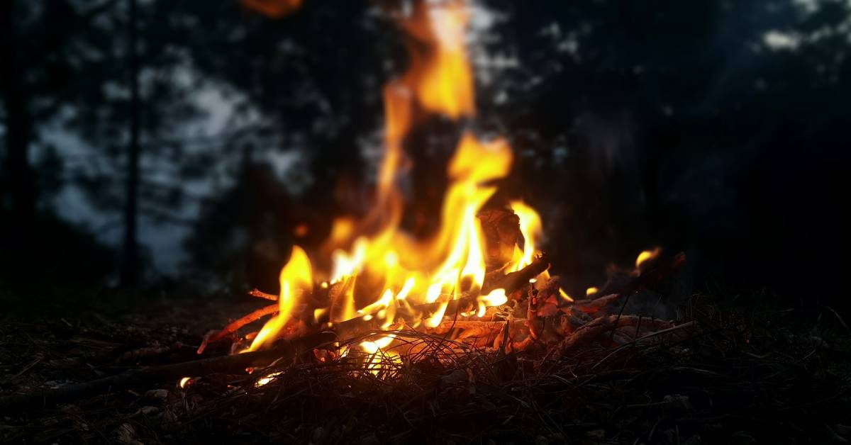 Small woodland fire