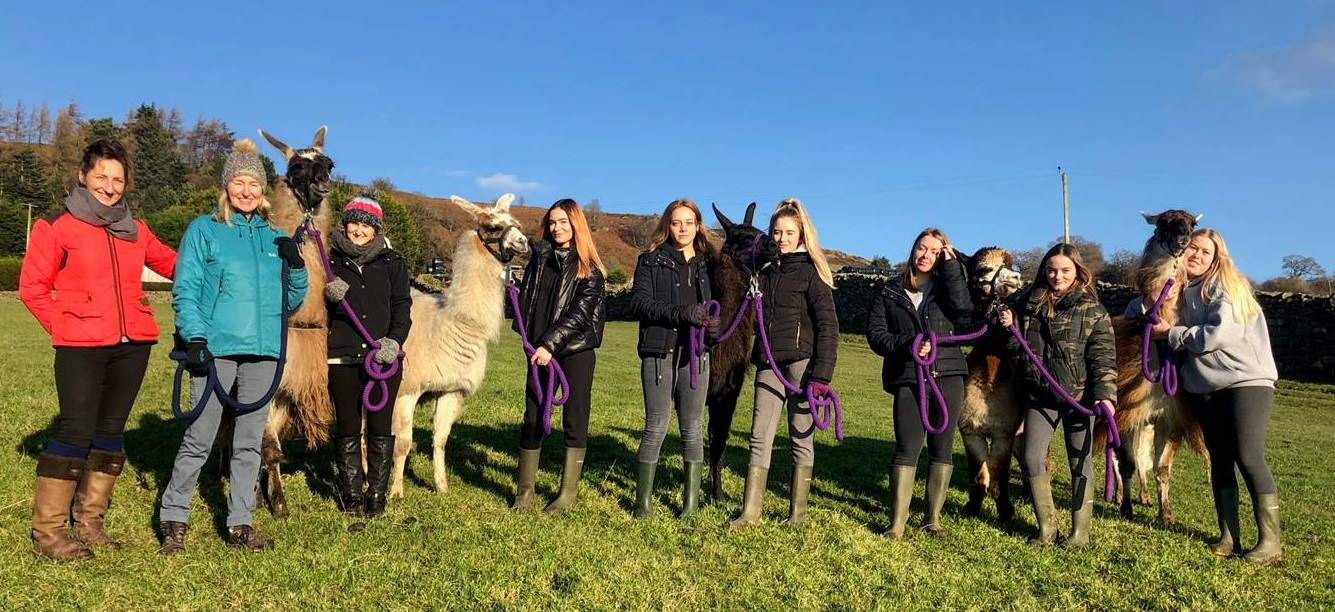 Nidderdale High School wins national award for pastoral project