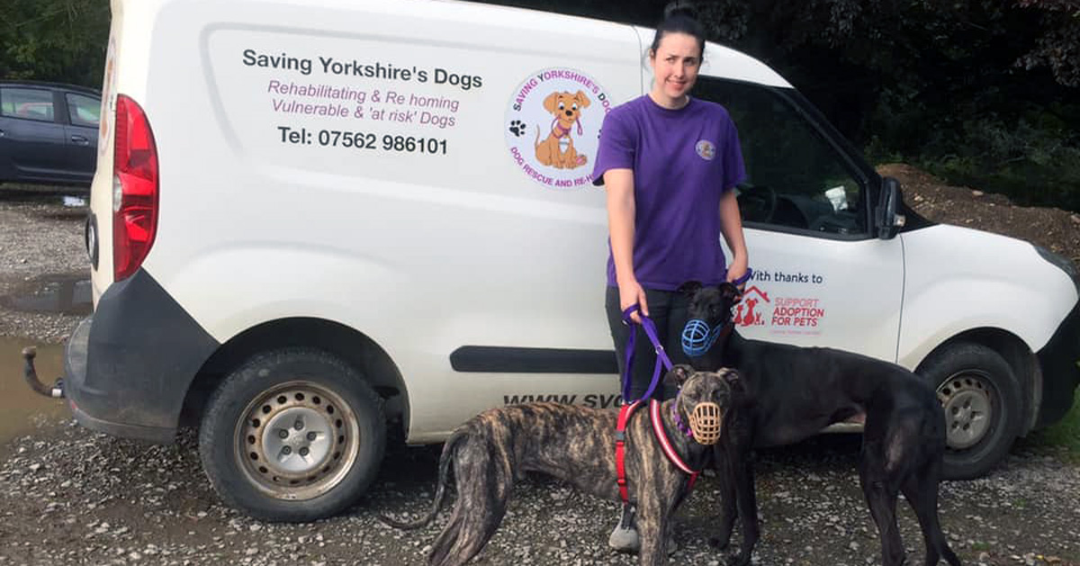 Dog rescue charity launches £250,000 appeal for new home