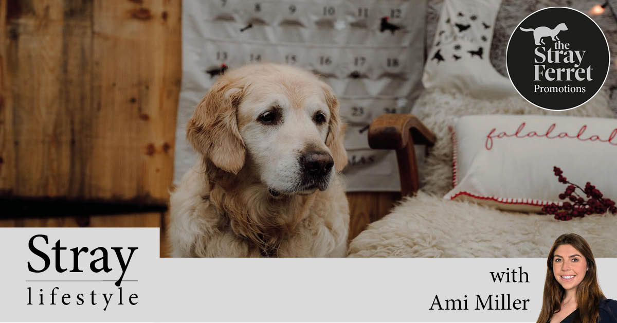 Deliver Woof: Give your furry friends to a personalised Christmas treat