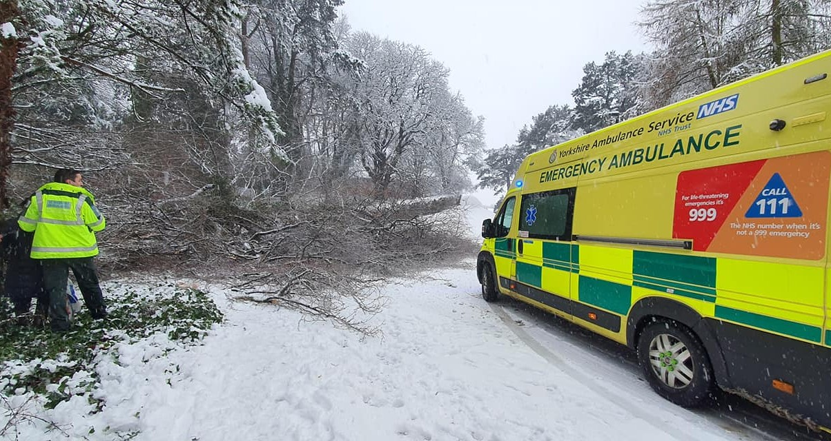 Ripon couple saved as tree falls in heavy snow