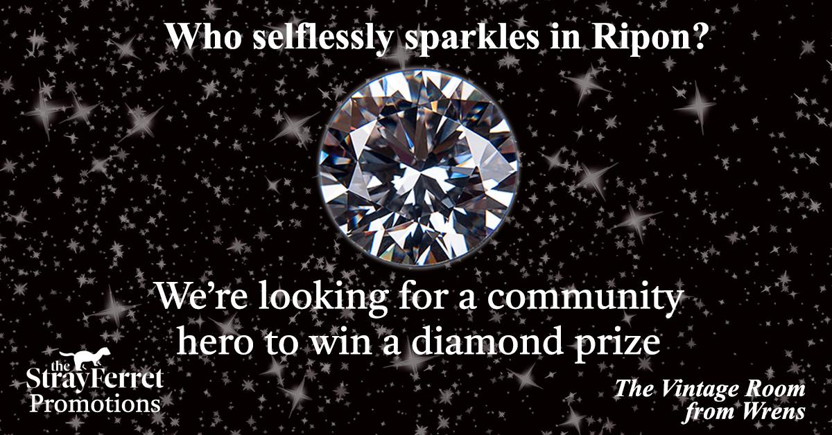 Meet four more sparkling Ripon Community Diamond entries
