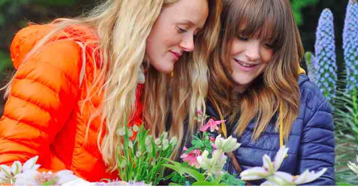 Spring Flower Show returns as first large event in Harrogate