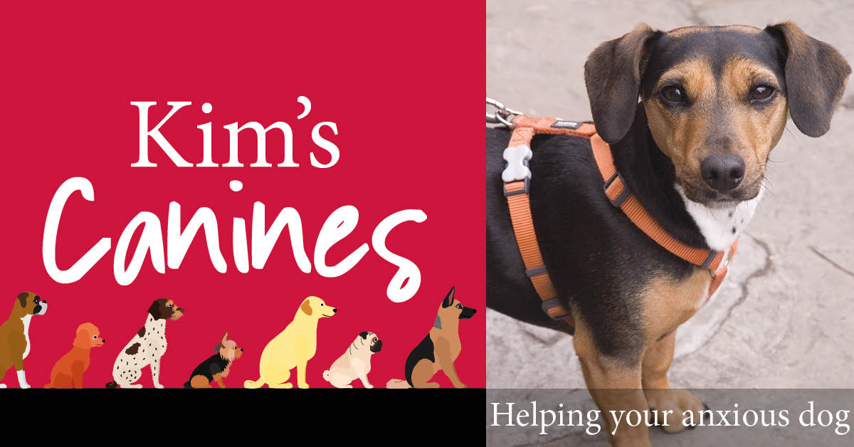 Kim's Canines: Social distancing is not just for humans
