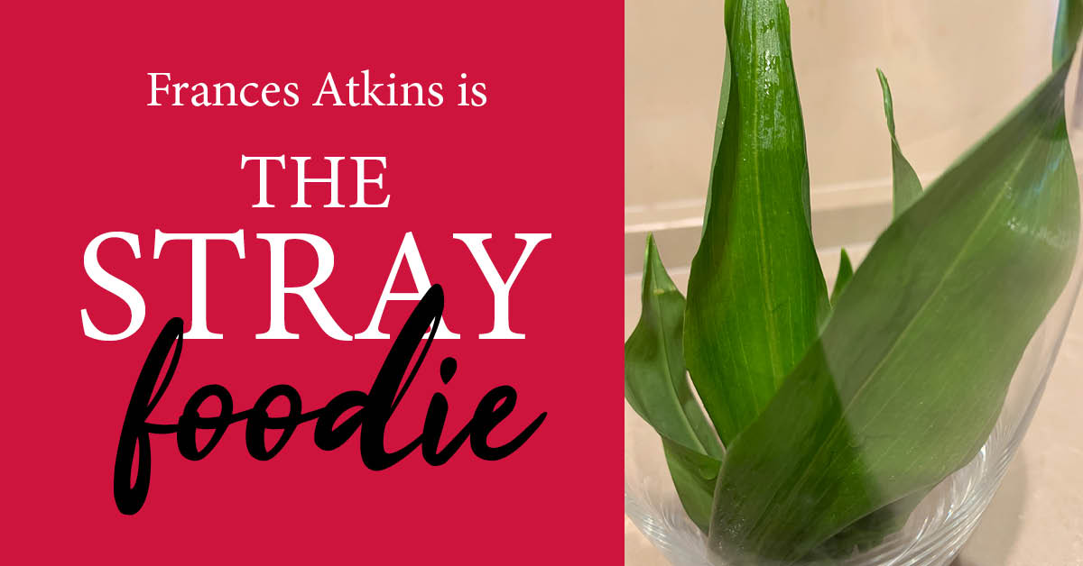 Stray Foodie recipe: the joy of Wild Garlic