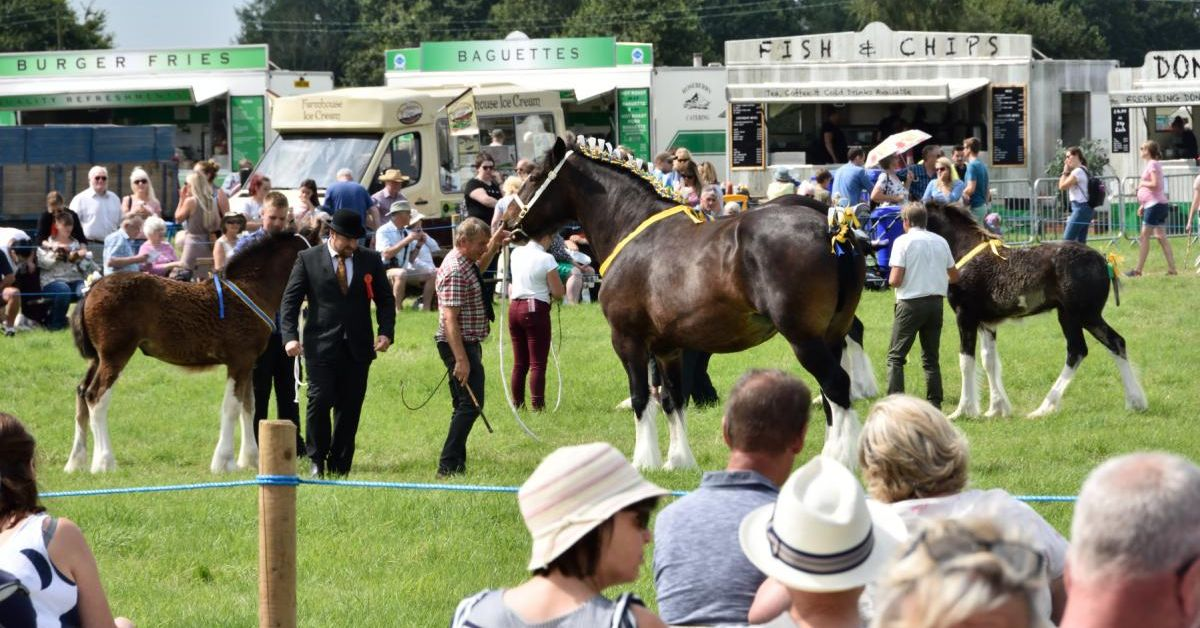 Tockwith Show cancelled due to covid uncertainty