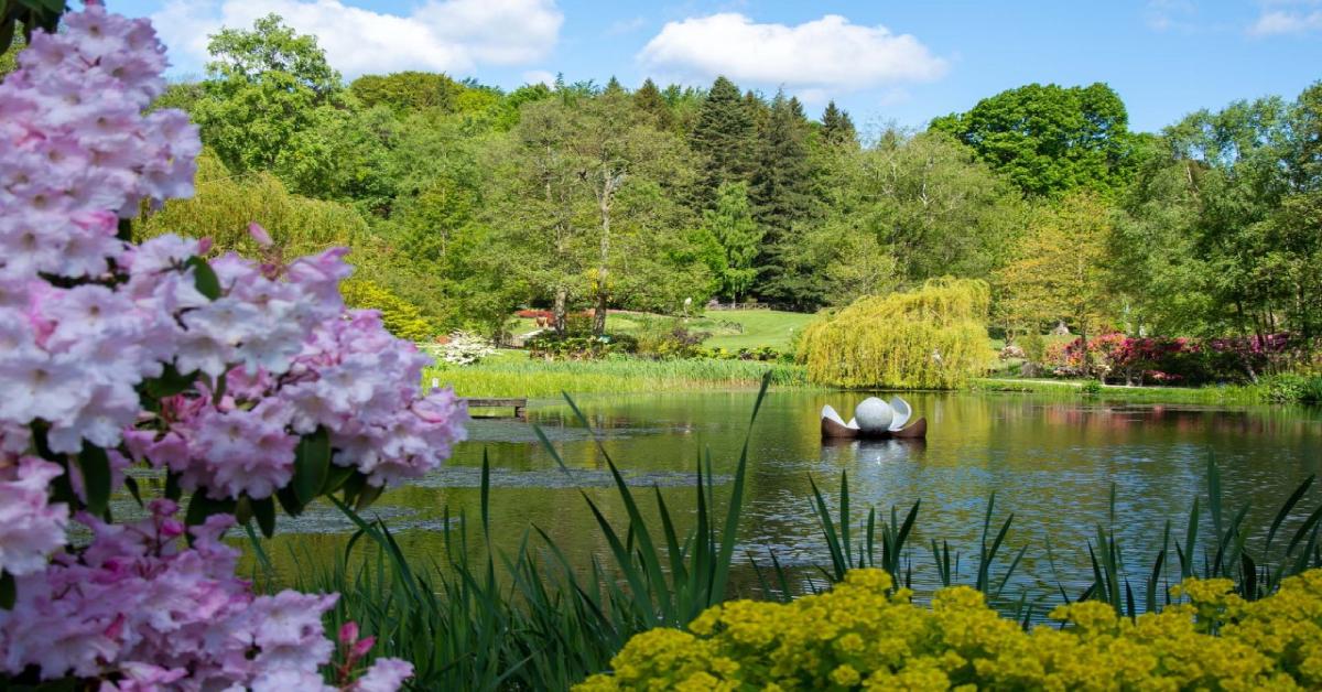 Ripon's Himalayan Garden set to reopen today