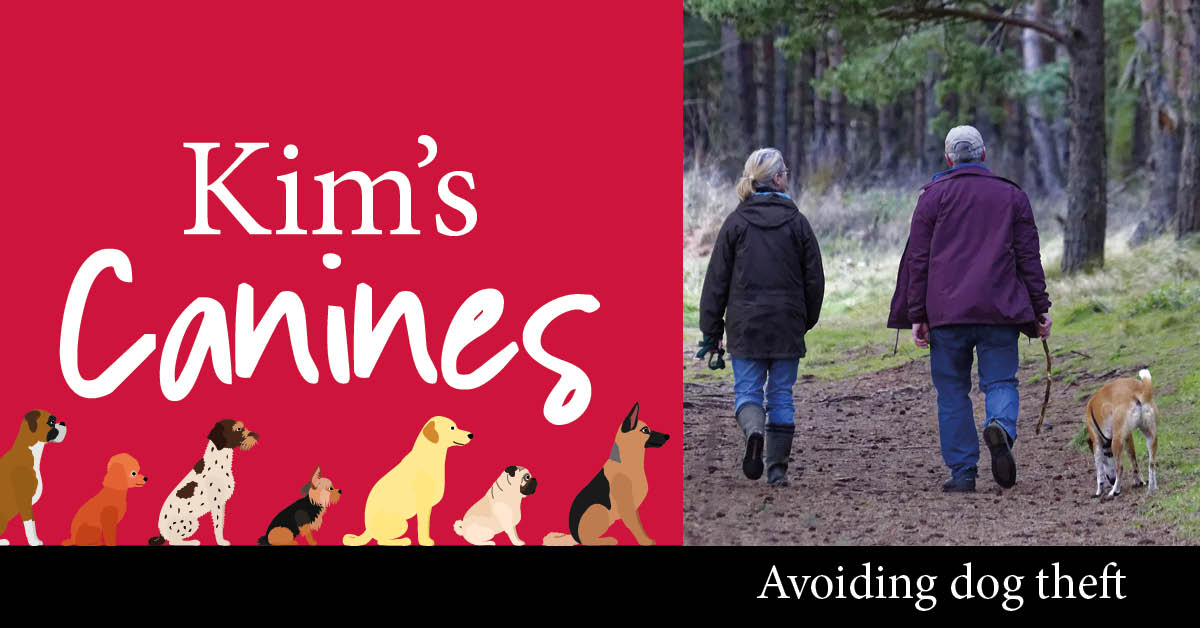Kim's Canines: Protecting your pooch from dog theft