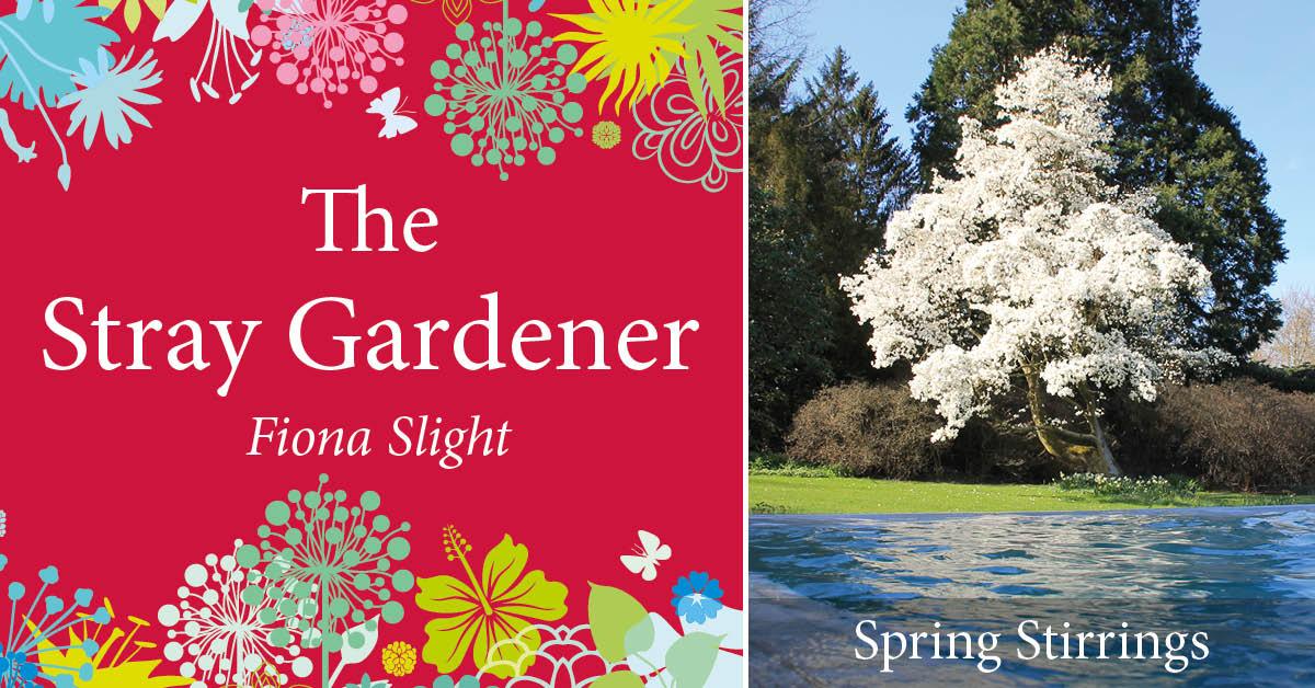The Stray Gardener: Spring Stirrings