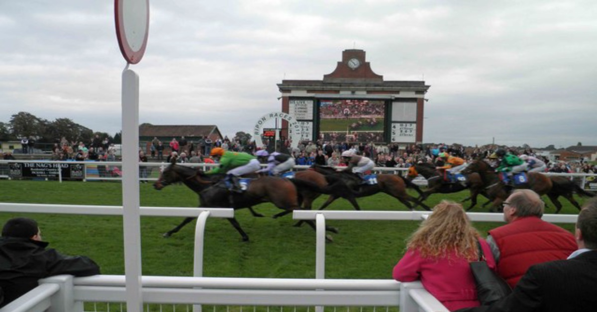 Horses at the finish line at Ripon Races. Picture: Steve Fareham/Geograph.