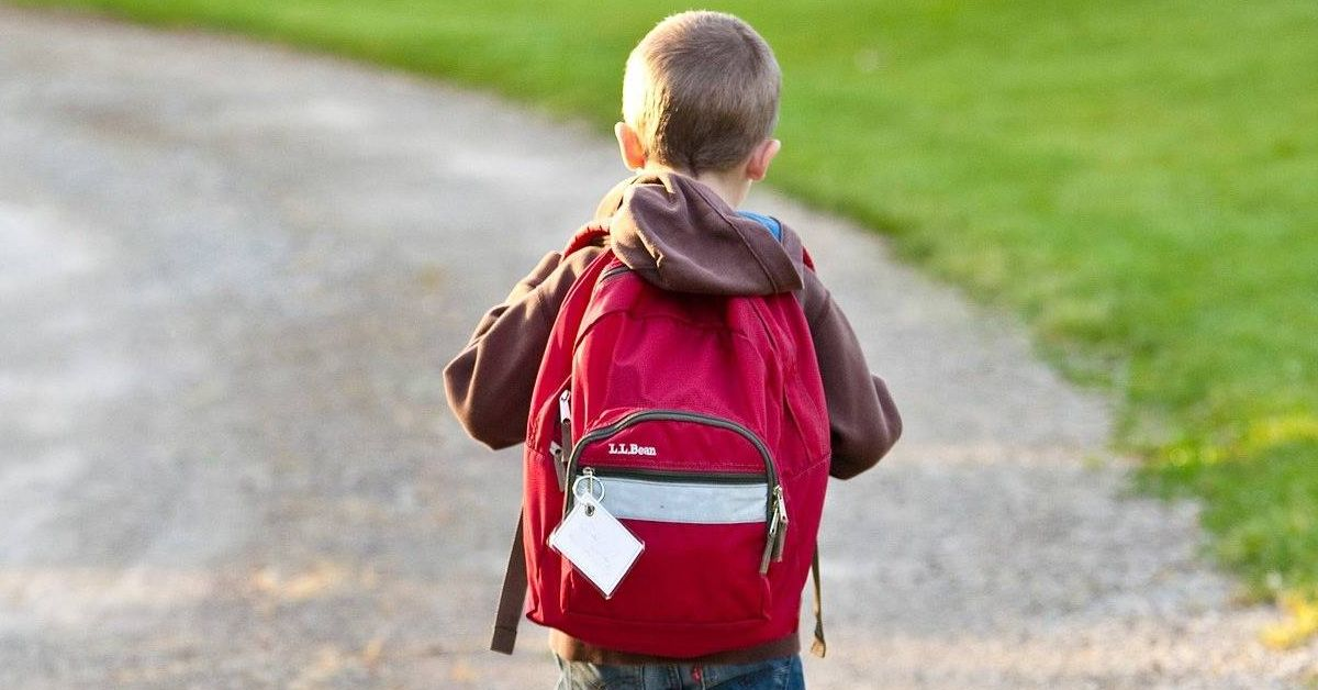 Zero Carbon Harrogate launches walk to school day