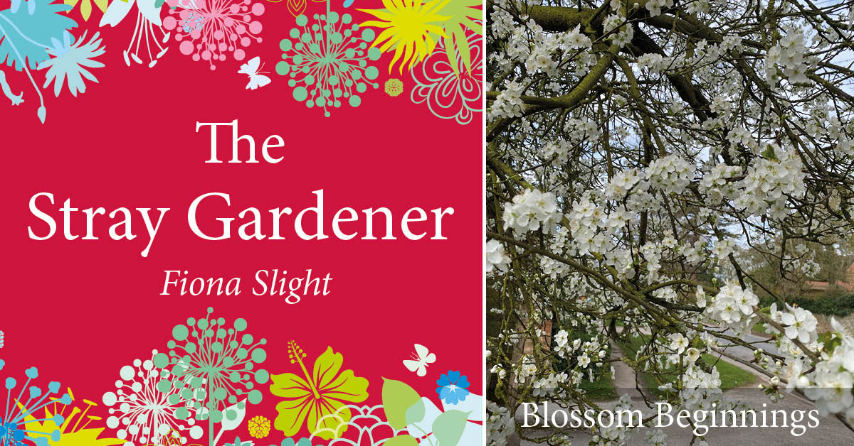 Stray Gardener: Blossom Beginnings