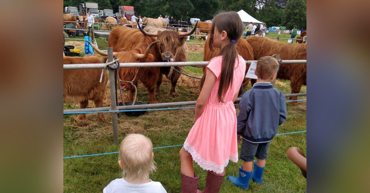 Aldborough and Boroughbridge Show cancelled for second year