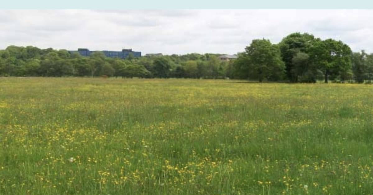 Traffic fears over plans for 560 homes on Harrogate's Otley Road