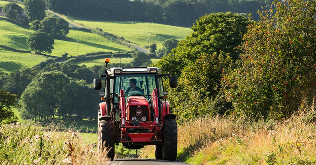 Post-Brexit grants available for Nidderdale farmers