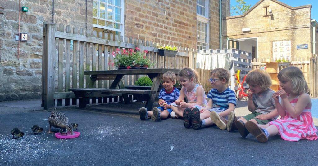 Ripley school kids and ducklings