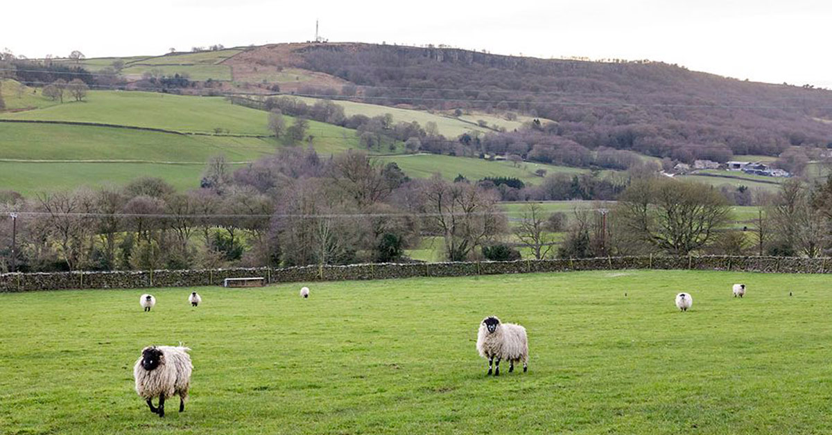 Blueprint to 'level up' rural North Yorkshire published today