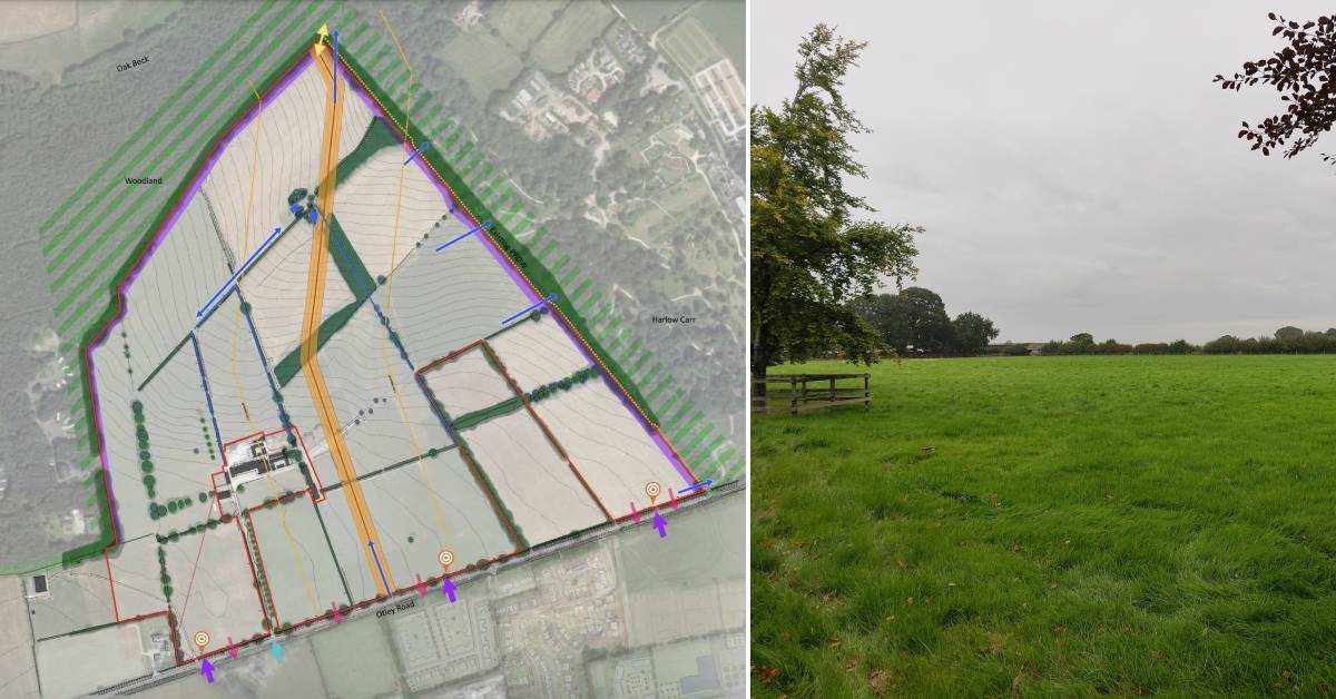 Bid for 780 homes and new school on Harrogate's Otley Road
