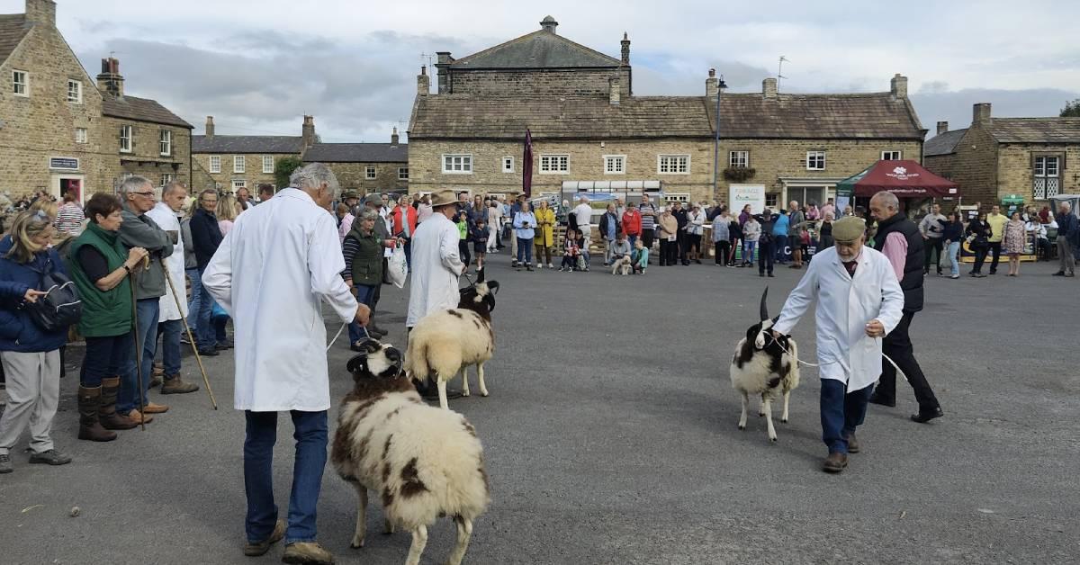 Crowds flock to Masham for return of sheep fair