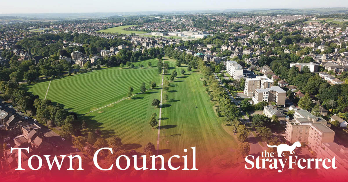Harrogate town council: the Stray's future and relationship with business